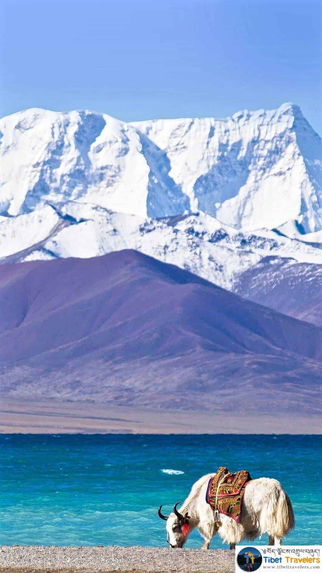 Best Time To Travel Tibet?